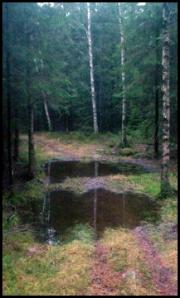Vattenfylld stig